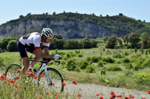 Boris Stein von der Seite in der Provence